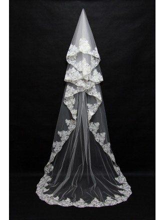 Princess Long Train Bridal Veil with Lace Trim